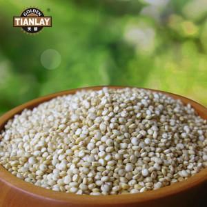 健康养生食品天藜大颗粒藜麦的种植环境