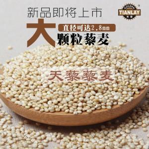 藜麦的营养价值天藜五钻大颗粒藜麦