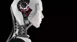 展望2017市场:国产机器人崛起之路需缓步