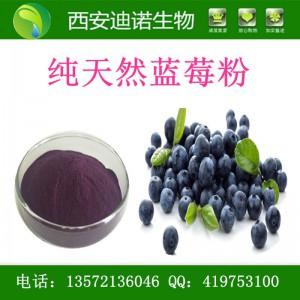 蓝莓提取物/蓝莓果汁粉