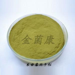 米曲霉孢子粉 发酵载体 米曲霉 腐熟菌种 米曲霉菌粉价格