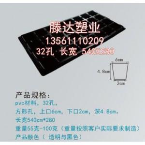 50孔PVC育苗盘批发/育苗穴盘价格/一次性育苗穴盘