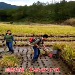 便携式水稻收割机 山丘 梯田收割机