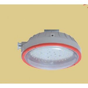 CCd96防爆免维护节能照明灯 22w环形防爆荧光灯