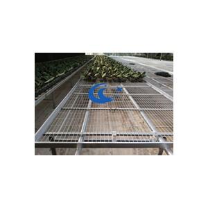 苗床网规格-先焊接后热镀锌、防腐性能高承重力好
