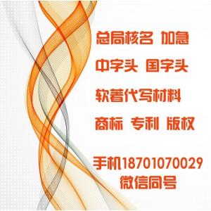 -实用新型专利申请-外观专利申请--国外专利申请