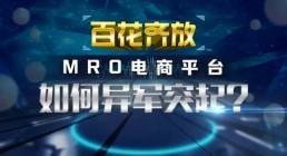 """""""百花齐放""""MRO电商平台 如何异军突起"""