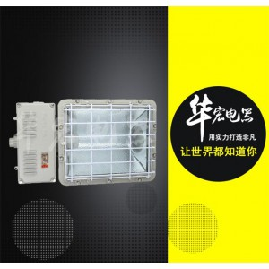 BAT53防爆泛光灯  河北化工厂专用防爆灯
