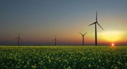 2050年可再生能源能满足全球用电