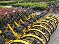 共享单车企业倒闭后押金难退 涉及10多亿元 (43播放)