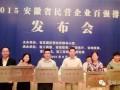 安徽民营企业:技术创新引领转型发展 (2播放)