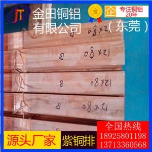 广东T2紫铜电位扁排 接地铜排 C1100紫铜条40x4mm