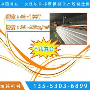 浙江一次性发泡珍珠棉生产线设备价格