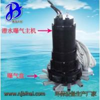 QXB0.75 可移动安装 潜水曝气机