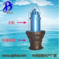 ZQB 350-70D-2 轴流泵