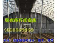 温室工程  棉被拱棚   寿光市万禾农业