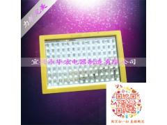 BAD808-L  LED防爆路灯