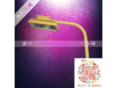 BAD808-L2 LED防爆路灯