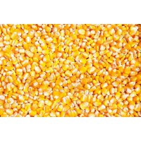 华粮求购糯米高粱玉米淀粉豆类碎米小麦等原料