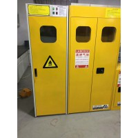防爆气瓶柜 可燃气体报警器 全钢双气瓶柜
